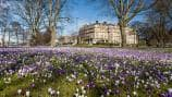 Hotels in Harrogate